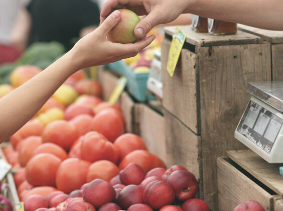 Image of a persons hand of someone buying an apple from a farmers market vendor.